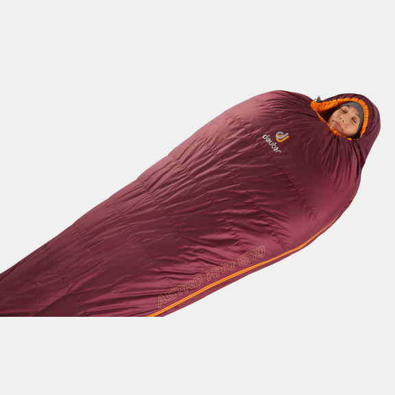 Down sleeping bag Astro Pro 600 - SL