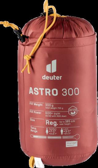 Sacos de dormir de plumón Astro 300 L